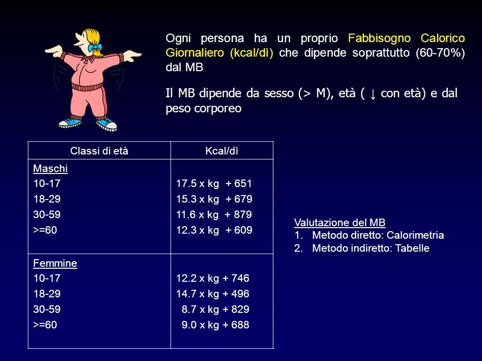 Il MB dipende da sesso (> M), età ( ↓ con età) e dal peso corporeo