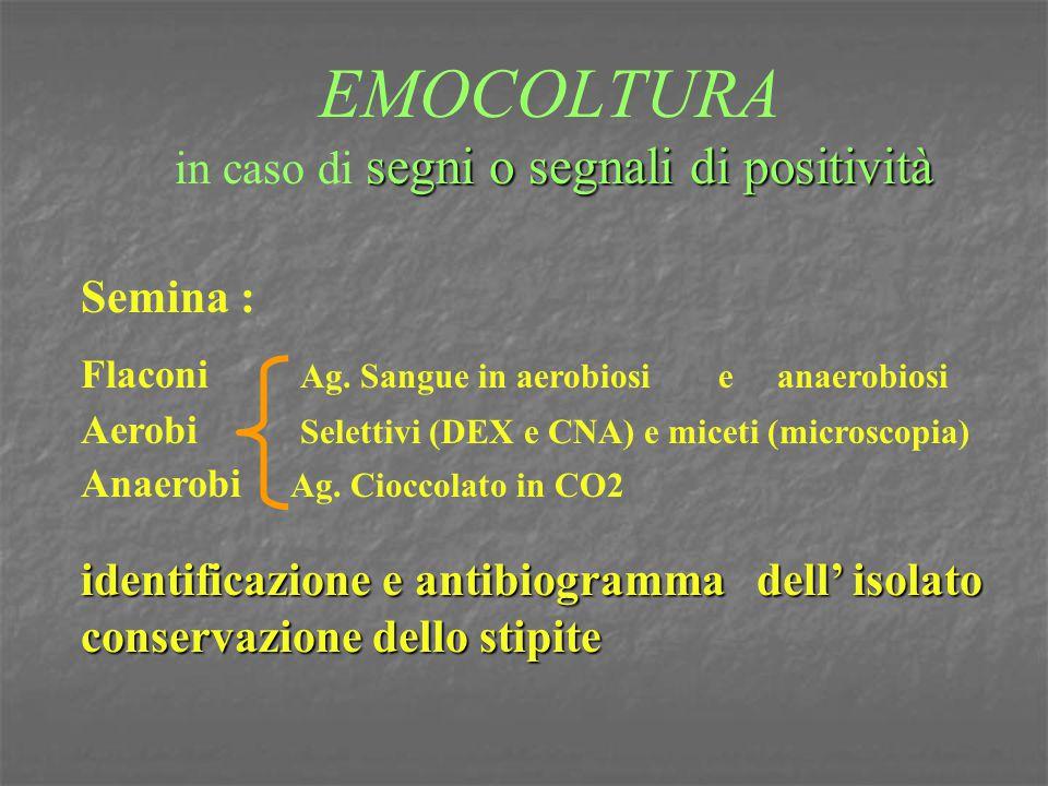 EMOCOLTURA in caso di segni o segnali di positività