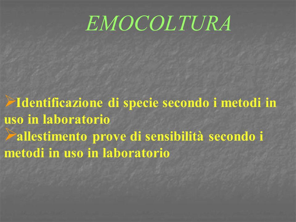 EMOCOLTURA Identificazione di specie secondo i metodi in uso in laboratorio.