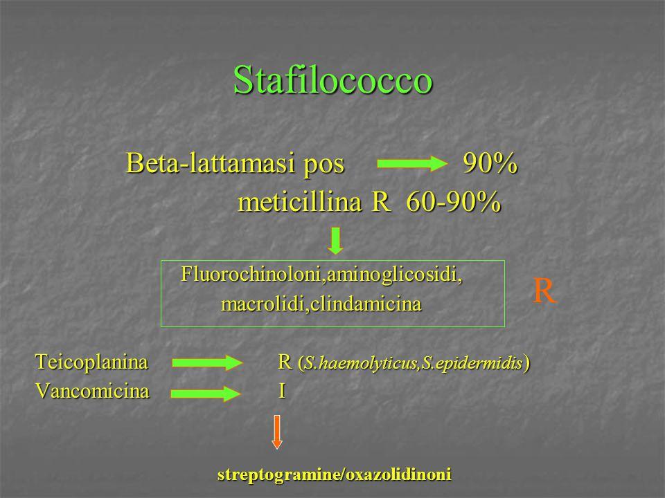 Stafilococco R Beta-lattamasi pos 90% meticillina R 60-90%