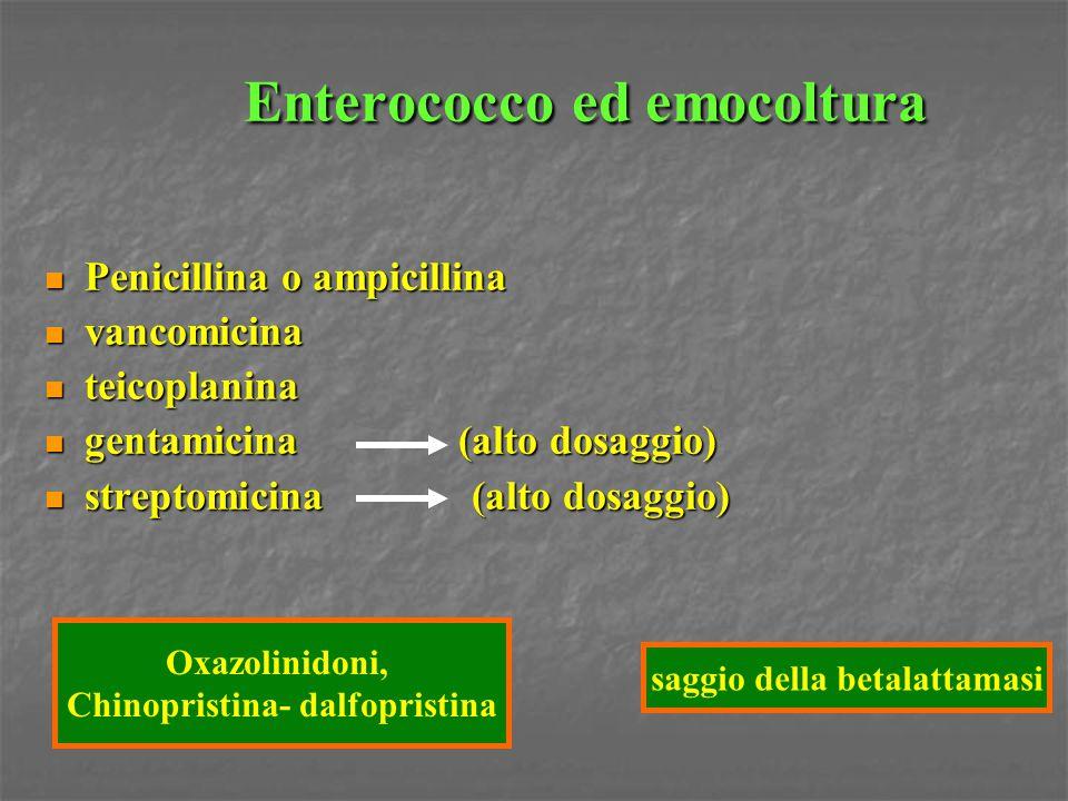 Enterococco ed emocoltura