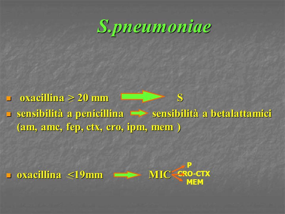 S.pneumoniae oxacillina > 20 mm S