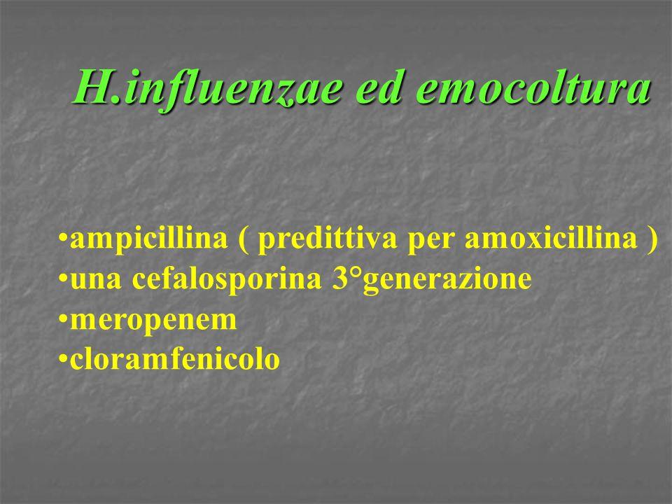 H.influenzae ed emocoltura