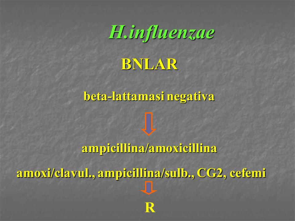 H.influenzae BNLAR R beta-lattamasi negativa ampicillina/amoxicillina