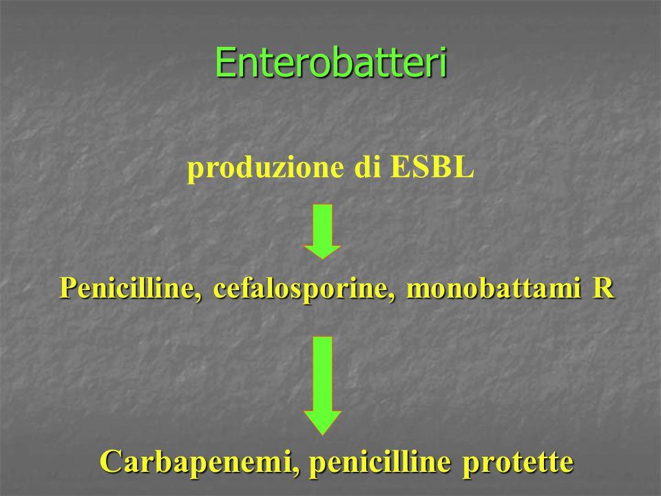 Carbapenemi, penicilline protette
