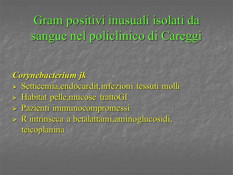 Gram positivi inusuali isolati da sangue nel policlinico di Careggi