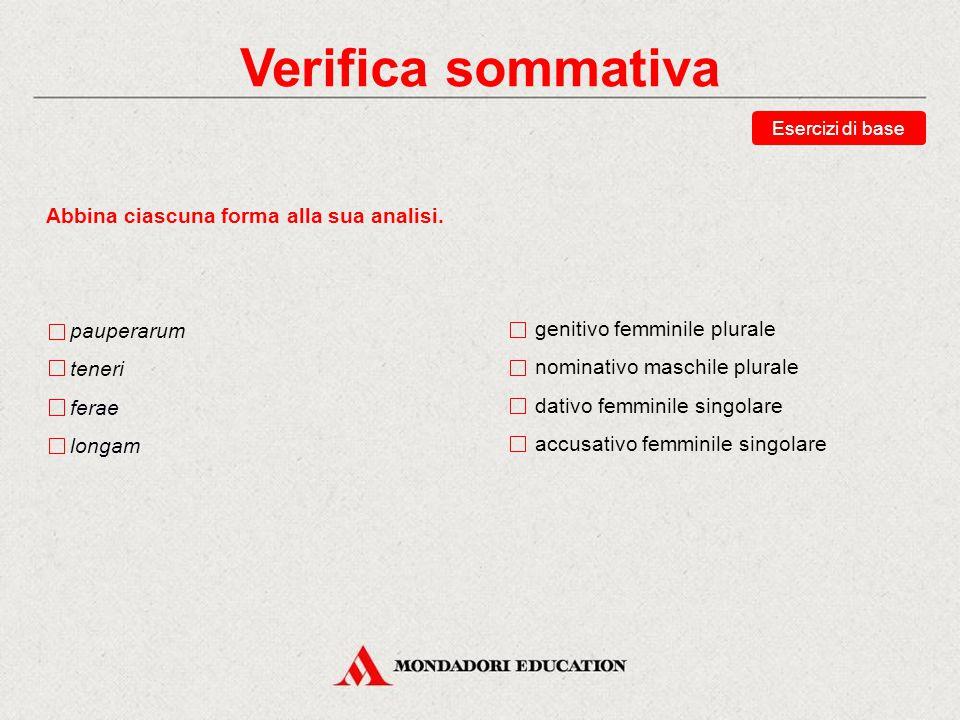 Verifica sommativa Abbina ciascuna forma alla sua analisi. pauperarum