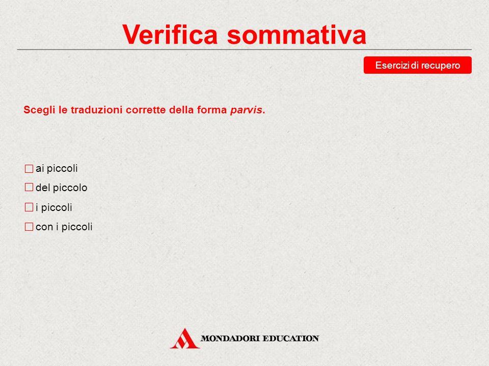 Verifica sommativa Scegli le traduzioni corrette della forma parvis.