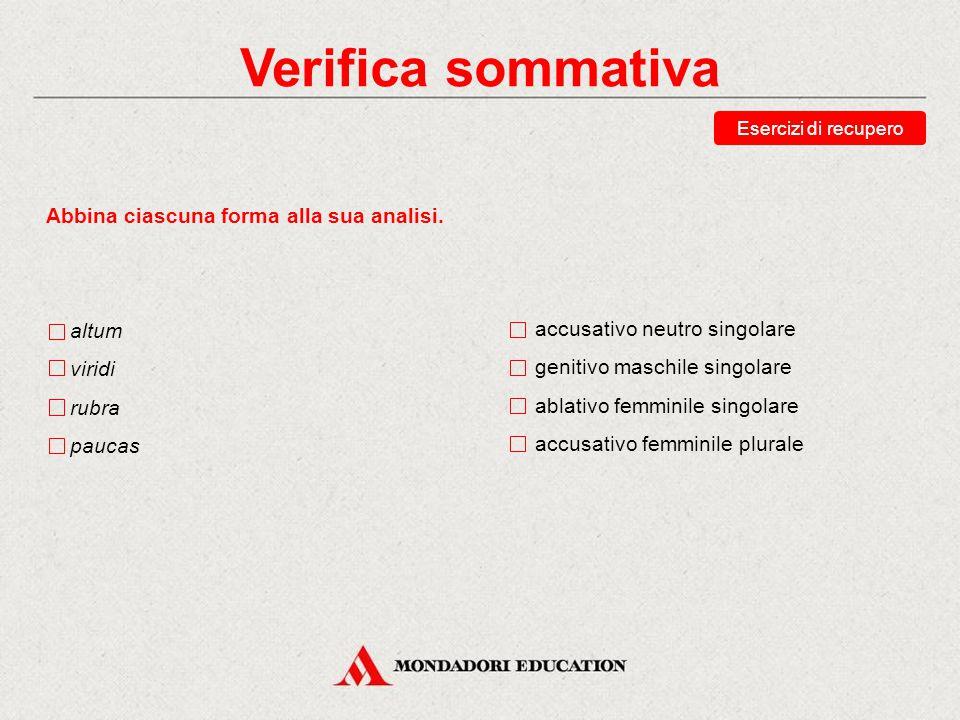 Verifica sommativa Abbina ciascuna forma alla sua analisi. altum