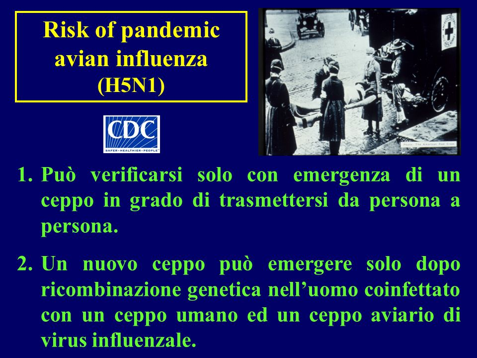 Risk of pandemic avian influenza (H5N1)