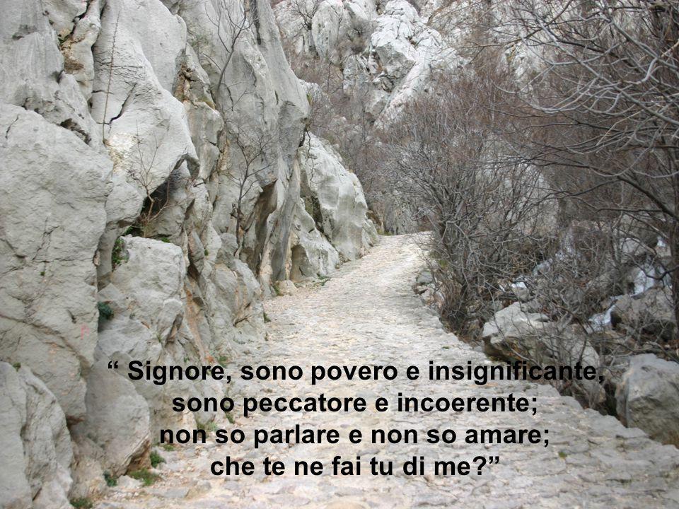 Signore, sono povero e insignificante, sono peccatore e incoerente;
