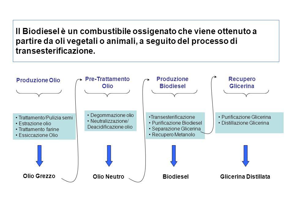 Il Biodiesel è un combustibile ossigenato che viene ottenuto a partire da oli vegetali o animali, a seguito del processo di transesterificazione.