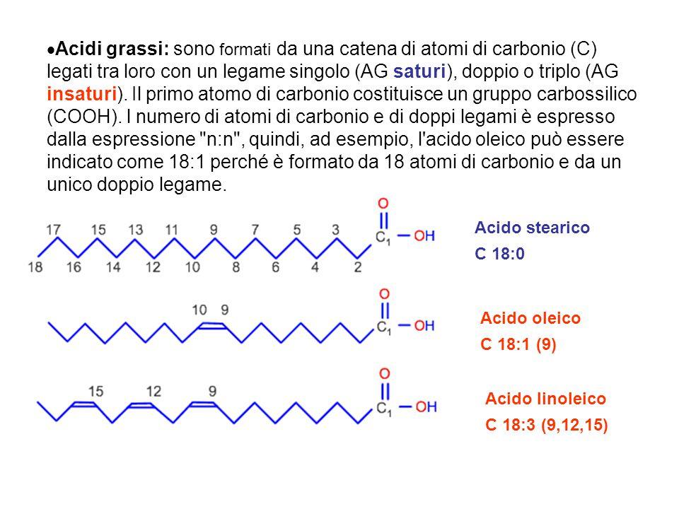 Acidi grassi: sono formati da una catena di atomi di carbonio (C) legati tra loro con un legame singolo (AG saturi), doppio o triplo (AG insaturi). Il primo atomo di carbonio costituisce un gruppo carbossilico (COOH). l numero di atomi di carbonio e di doppi legami è espresso dalla espressione n:n , quindi, ad esempio, l acido oleico può essere indicato come 18:1 perché è formato da 18 atomi di carbonio e da un unico doppio legame.