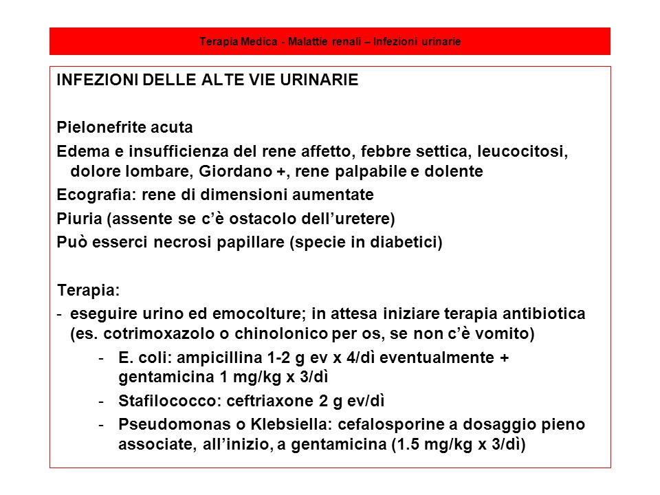 Terapia Medica - Malattie renali – Infezioni urinarie