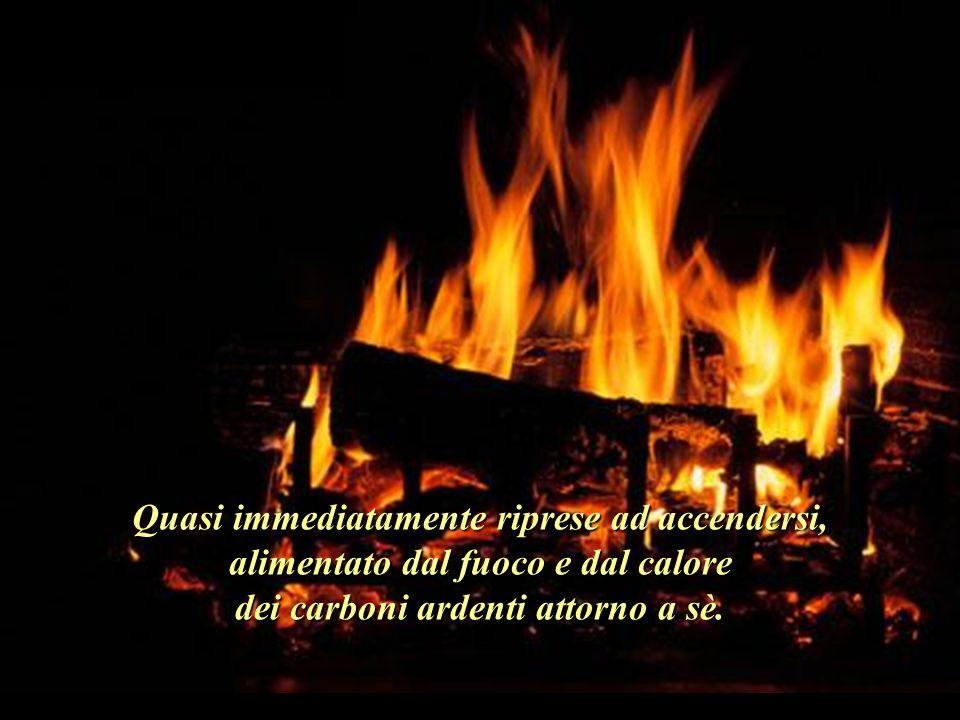 Quasi immediatamente riprese ad accendersi, alimentato dal fuoco e dal calore dei carboni ardenti attorno a sè.
