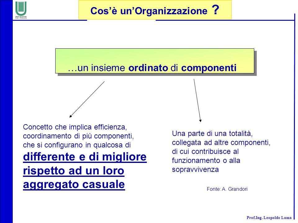 Cos'è un'Organizzazione