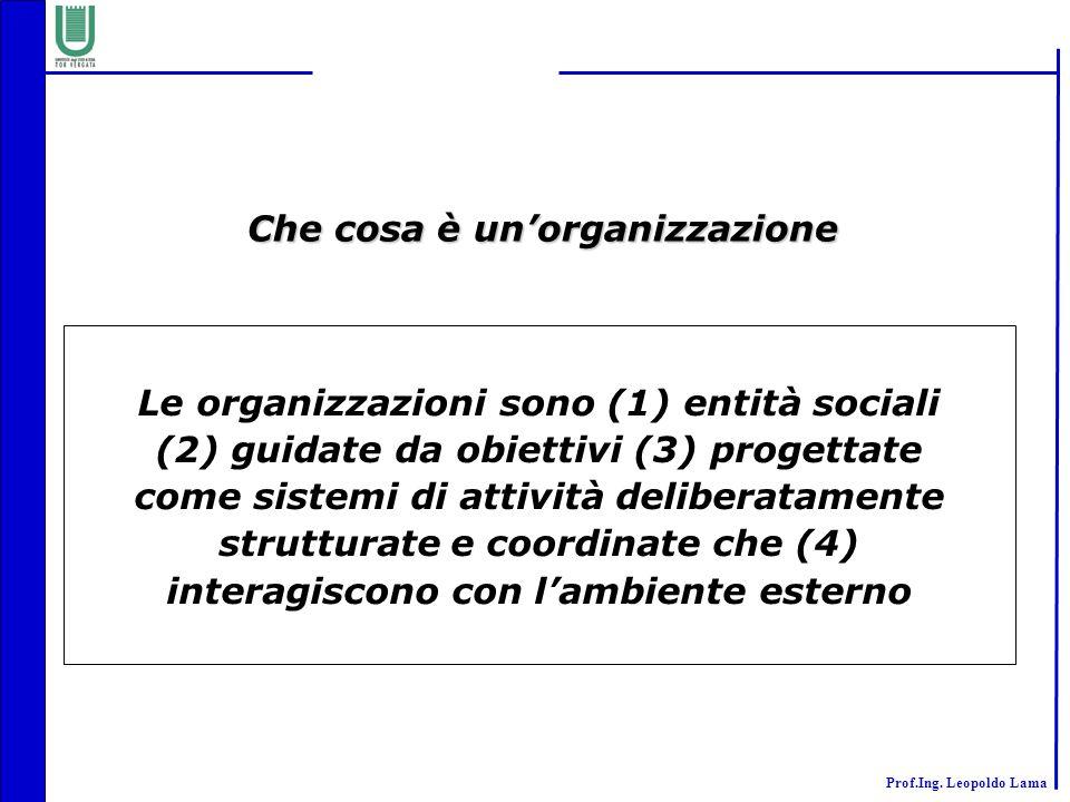 Che cosa è un'organizzazione