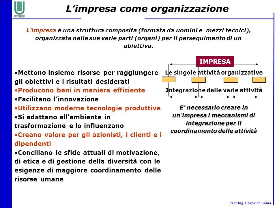 L'impresa come organizzazione
