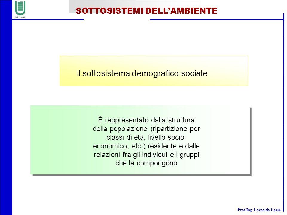 Il sottosistema demografico-sociale
