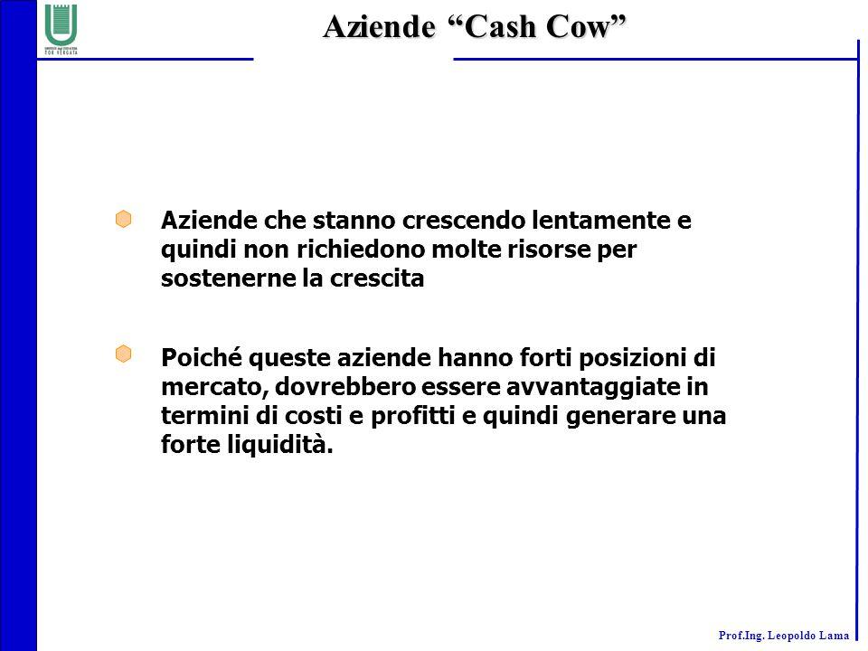 Aziende Cash Cow Aziende che stanno crescendo lentamente e quindi non richiedono molte risorse per sostenerne la crescita.