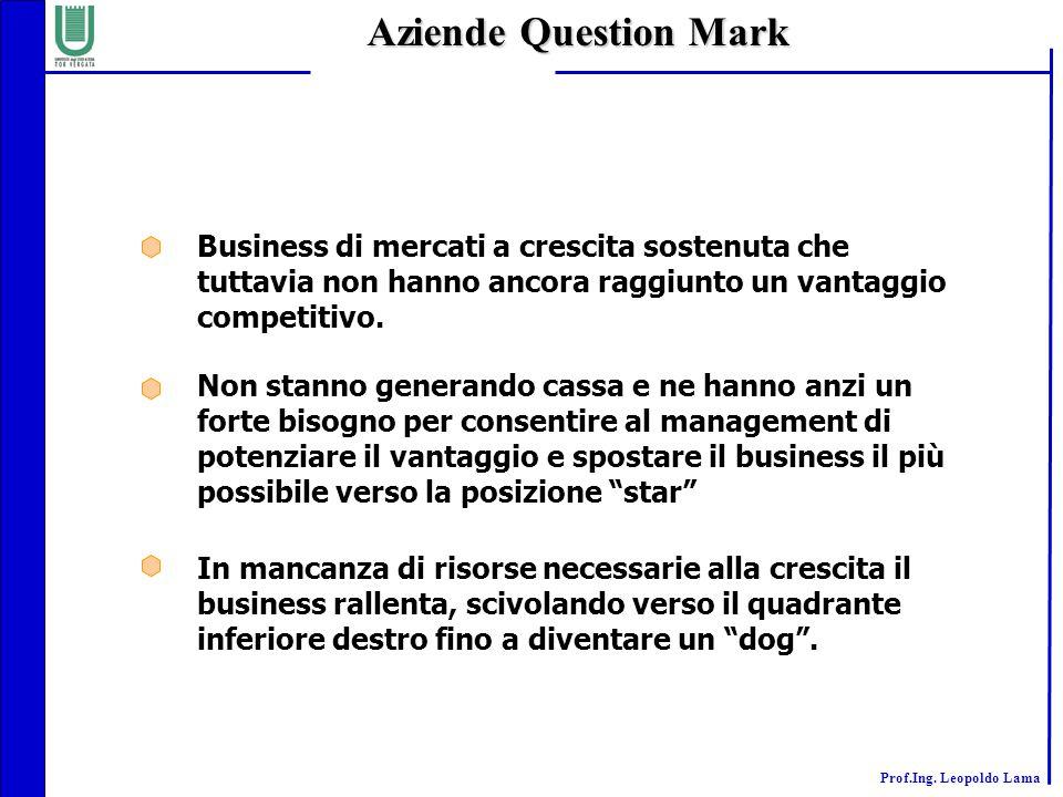Aziende Question Mark Business di mercati a crescita sostenuta che tuttavia non hanno ancora raggiunto un vantaggio competitivo.