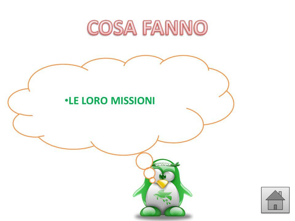 COSA FANNO LE LORO MISSIONI