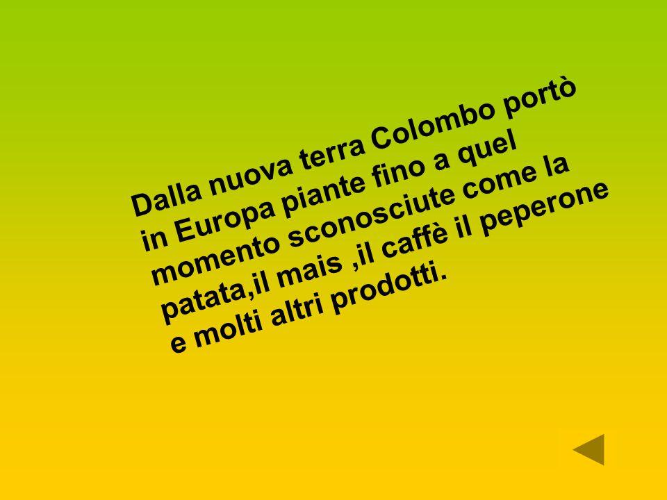 Dalla nuova terra Colombo portò in Europa piante fino a quel momento sconosciute come la patata,il mais ,il caffè il peperone e molti altri prodotti.