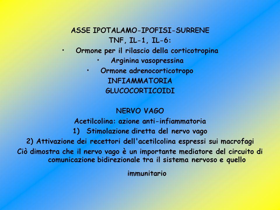 ASSE IPOTALAMO-IPOFISI-SURRENE TNF, IL-1, IL-6: