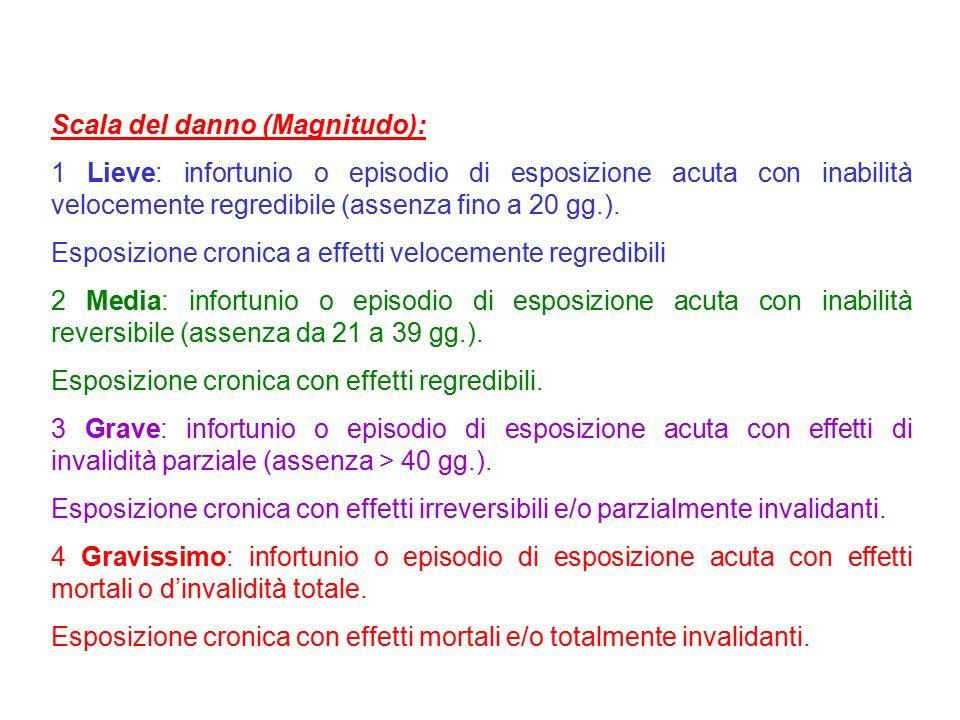 Scala del danno (Magnitudo):