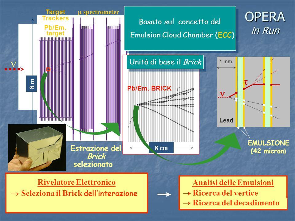 Rivelatore Elettronico Analisi delle Emulsioni