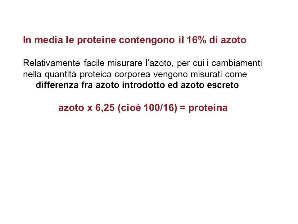 In media le proteine contengono il 16% di azoto