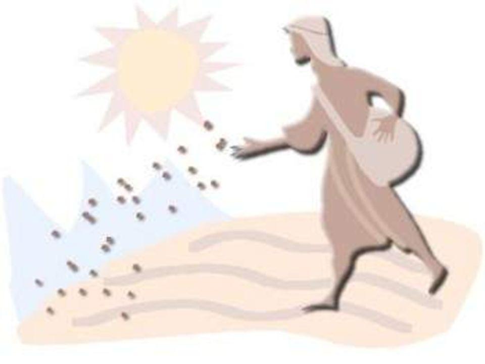 E tu, Signore, per questa gioia degli umili - gioia divina, da impazzire -, continua a intervenire: sarà anche per te la gioia più grande e umana! Troppi popoli poveri ancora seminano nel pianto, senza neppure il diritto di raccogliere il frumento maturato con l acqua delle loro lacrime.