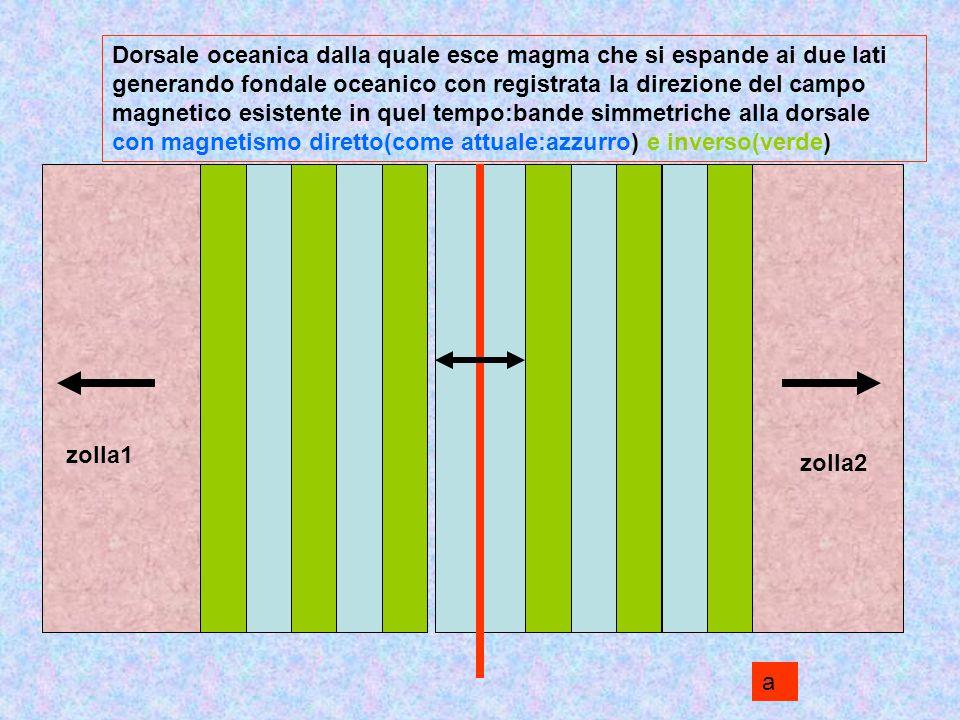 Dorsale oceanica dalla quale esce magma che si espande ai due lati generando fondale oceanico con registrata la direzione del campo magnetico esistente in quel tempo:bande simmetriche alla dorsale con magnetismo diretto(come attuale:azzurro) e inverso(verde)