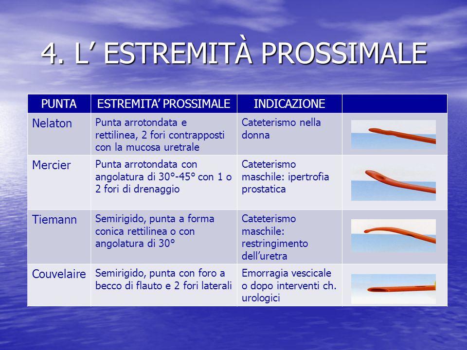 4. L' ESTREMITÀ PROSSIMALE