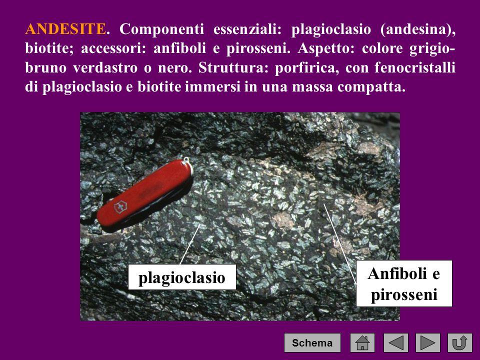 Anfiboli e pirosseni plagioclasio