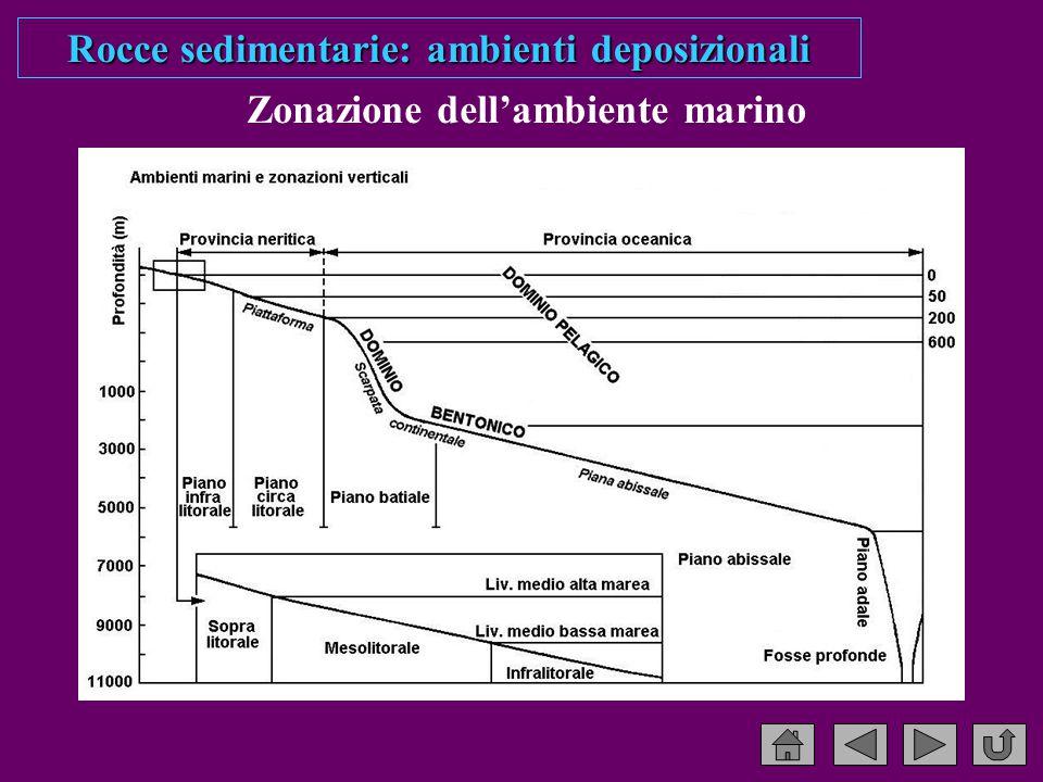 Rocce sedimentarie: ambienti deposizionali