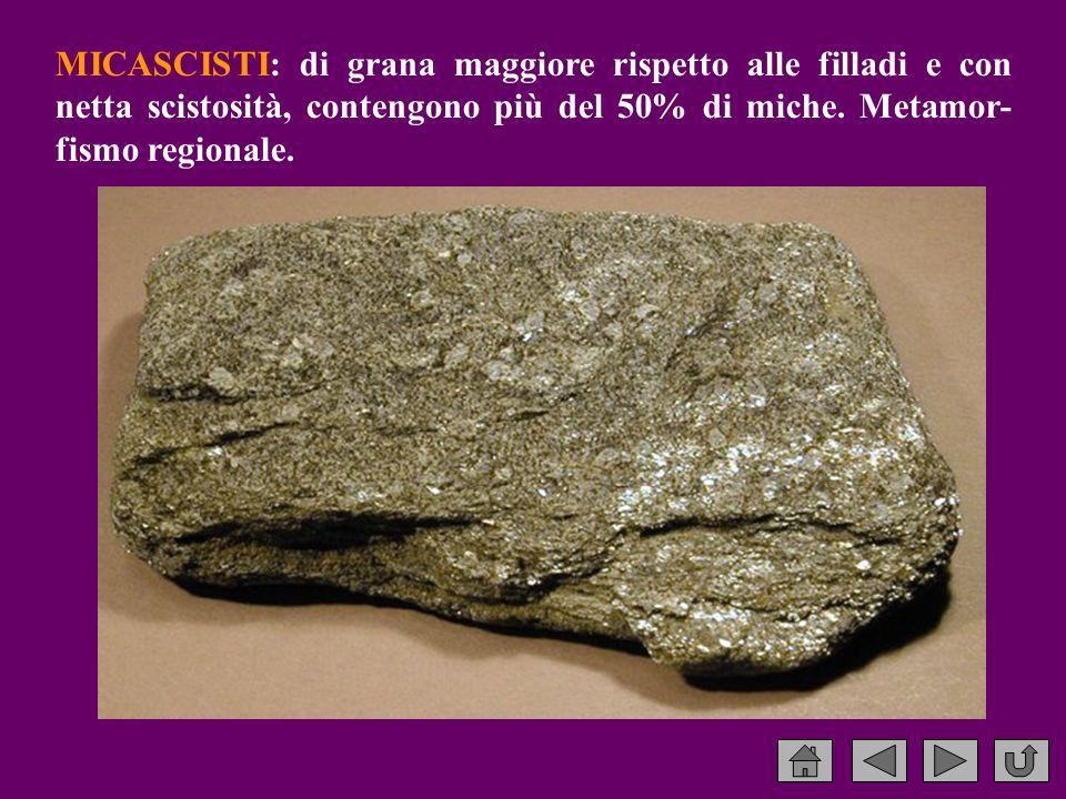 MICASCISTI: di grana maggiore rispetto alle filladi e con netta scistosità, contengono più del 50% di miche.