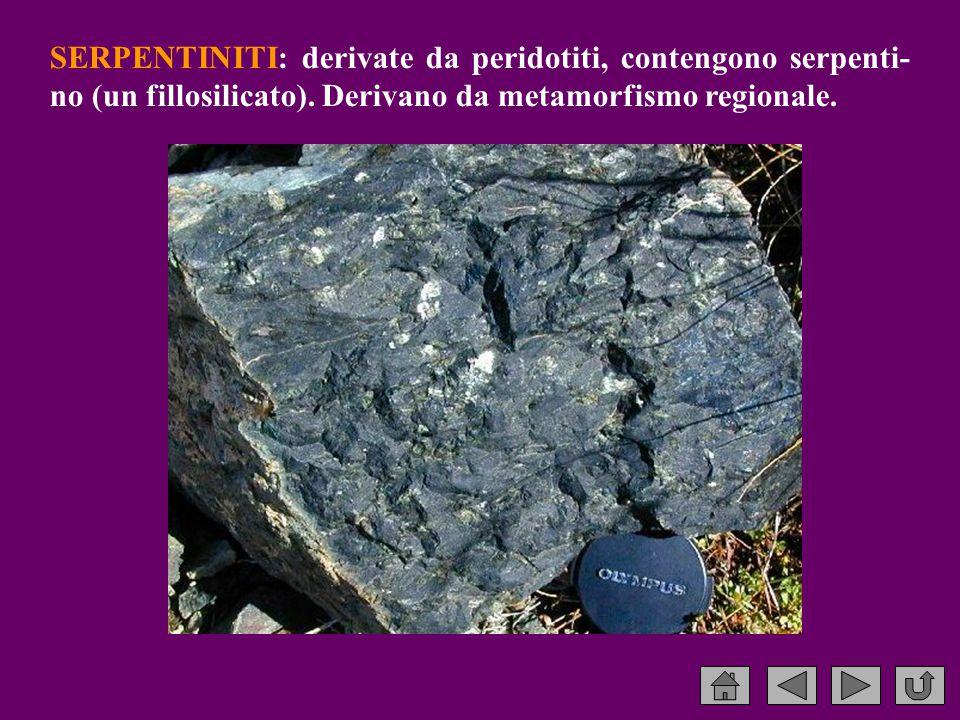 SERPENTINITI: derivate da peridotiti, contengono serpenti-no (un fillosilicato).