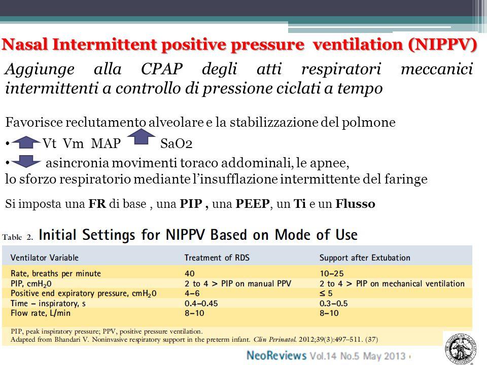 Nasal Intermittent positive pressure ventilation (NIPPV)