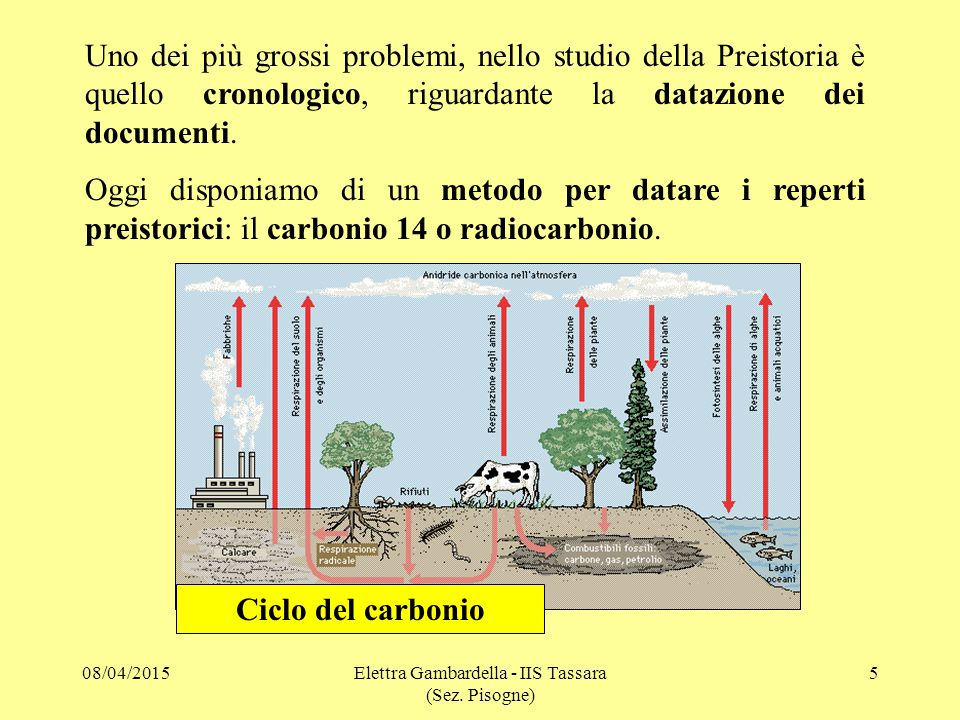Elettra Gambardella - IIS Tassara (Sez. Pisogne)