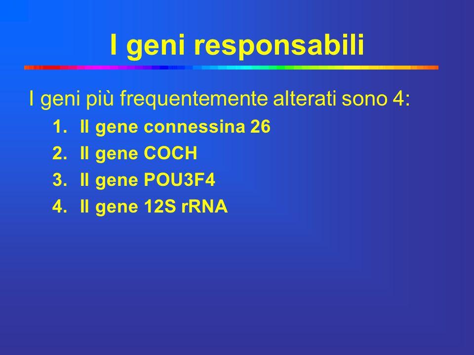 I geni responsabili I geni più frequentemente alterati sono 4:
