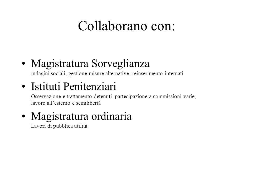 Collaborano con: Magistratura Sorveglianza indagini sociali, gestione misure alternative, reinserimento internati.