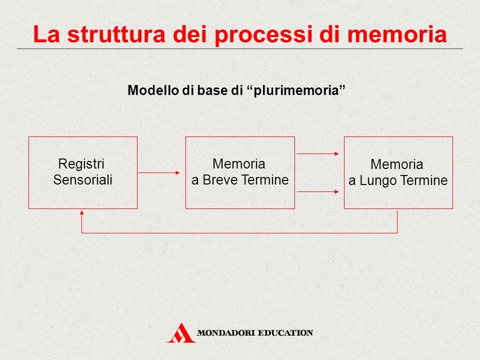 La struttura dei processi di memoria