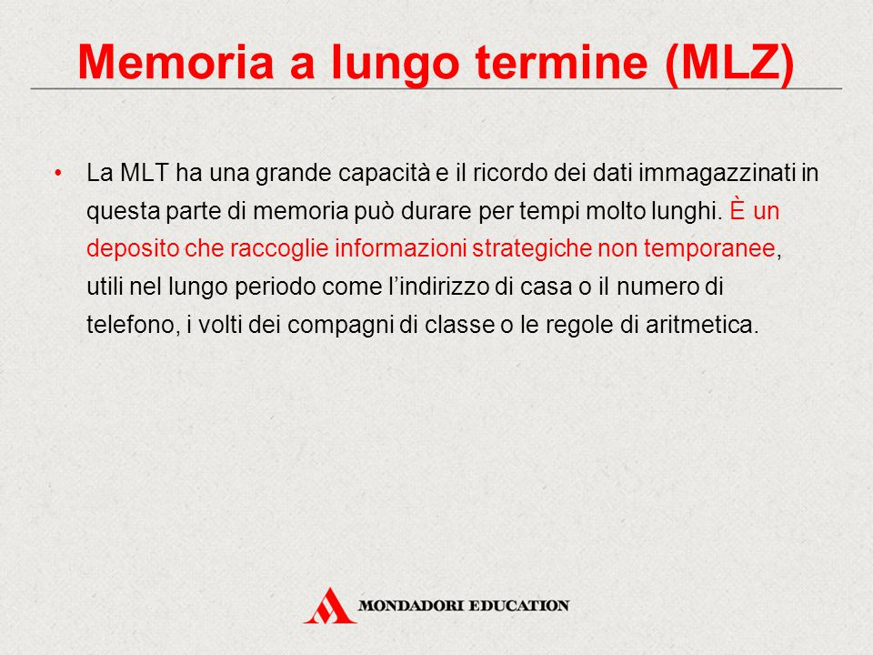 Memoria a lungo termine (MLZ)