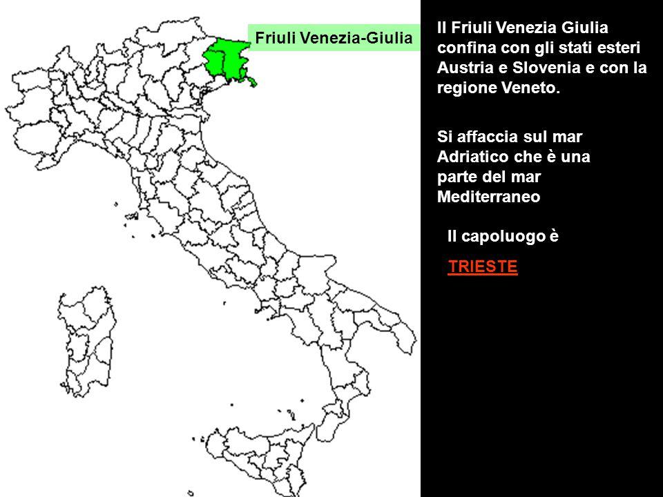 Il Friuli Venezia Giulia confina con gli stati esteri Austria e Slovenia e con la regione Veneto.