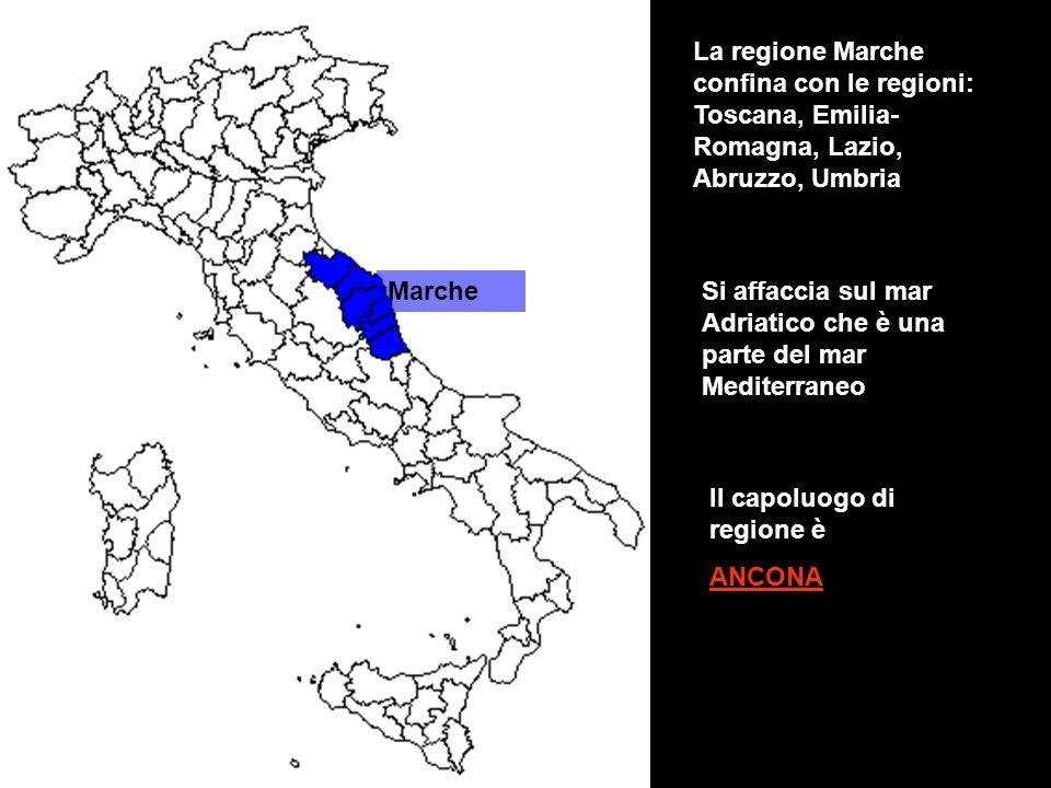 La regione Marche confina con le regioni: Toscana, Emilia-Romagna, Lazio, Abruzzo, Umbria