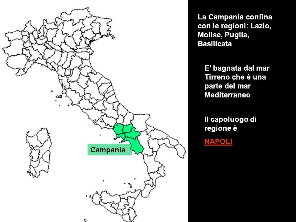 La Campania confina con le regioni: Lazio, Molise, Puglia, Basilicata