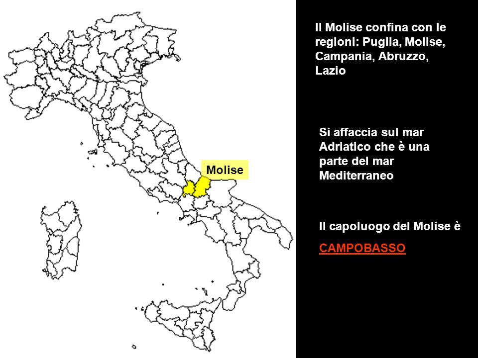 Il Molise confina con le regioni: Puglia, Molise, Campania, Abruzzo, Lazio