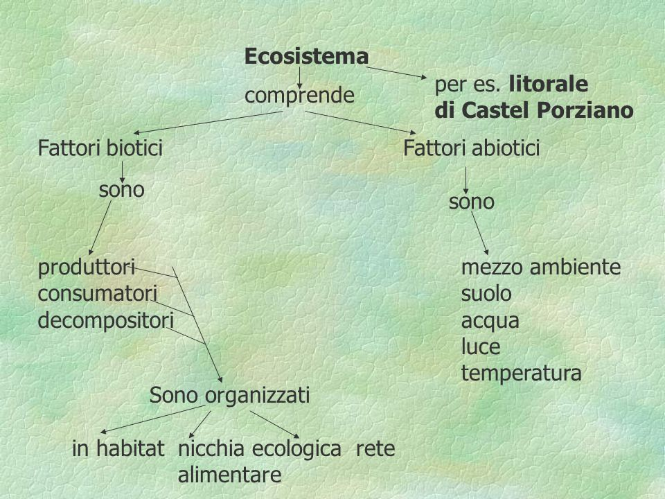 in habitat nicchia ecologica rete alimentare