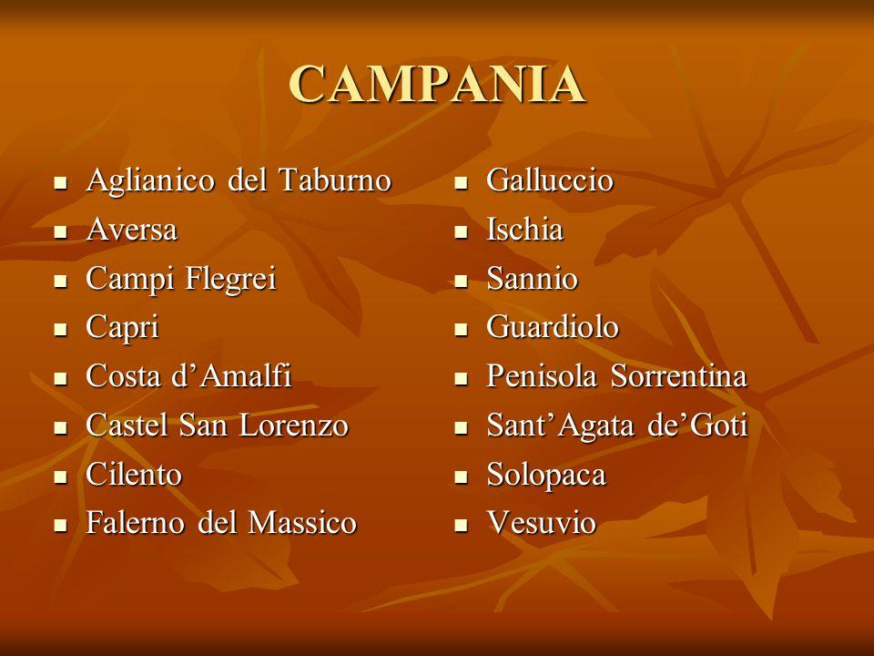 CAMPANIA Aglianico del Taburno Aversa Campi Flegrei Capri